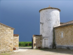 Chateau Sauternes 1