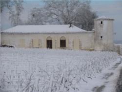 Chateau Sauternes 1